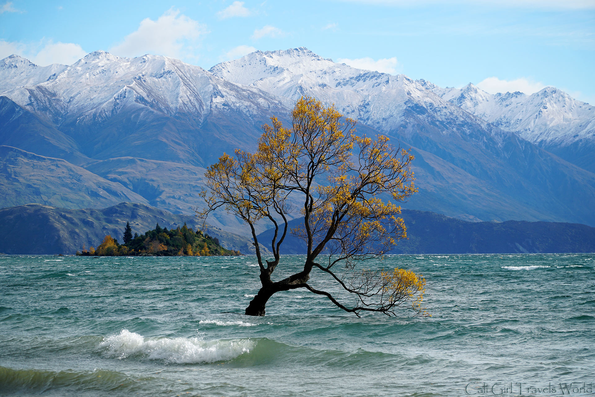 Enjoying a beautiful day in Wanaka in Fall. at the Wanaka Tree