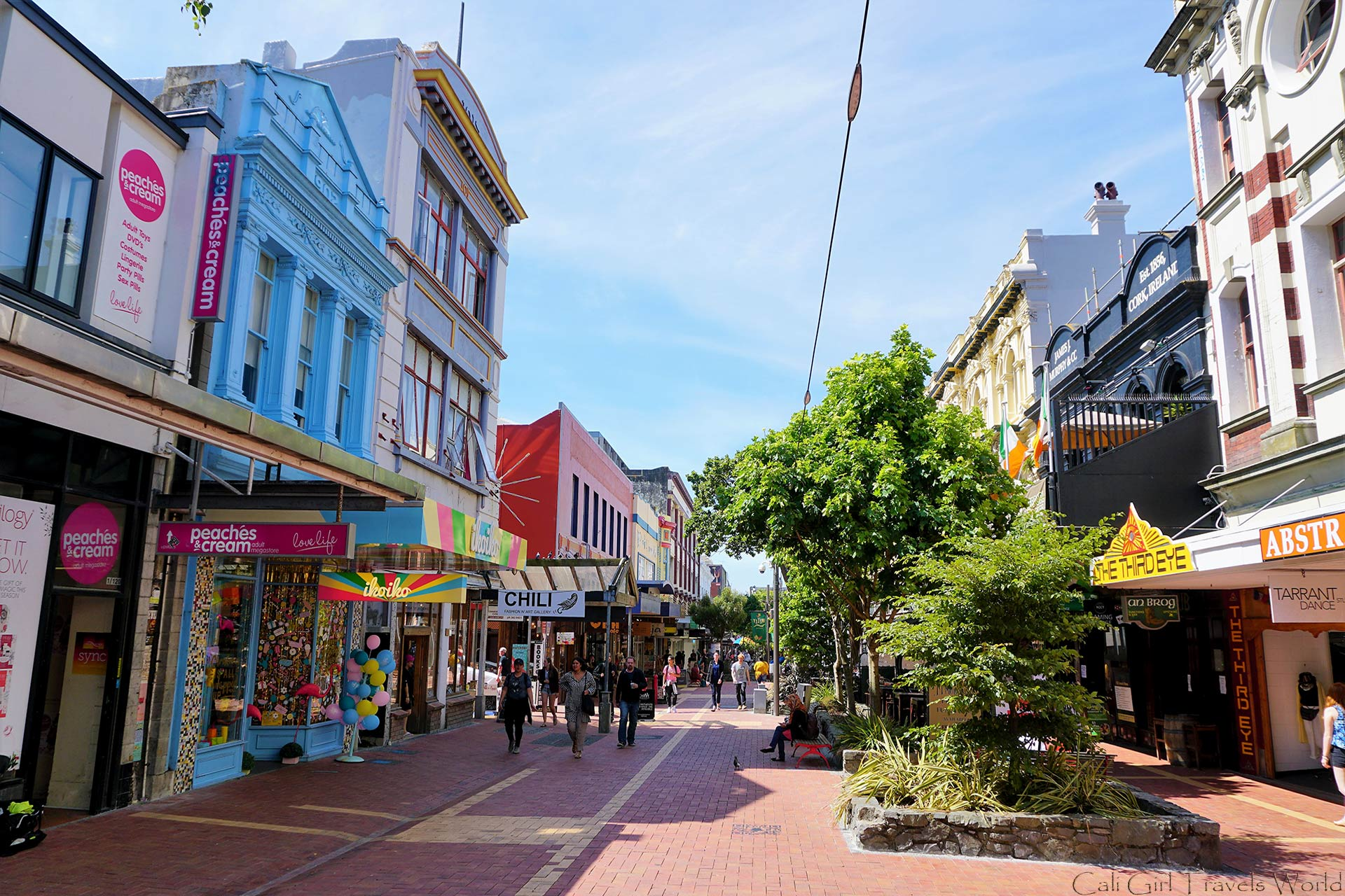 A photo of cuba street in wellington on the north island of new zealand.