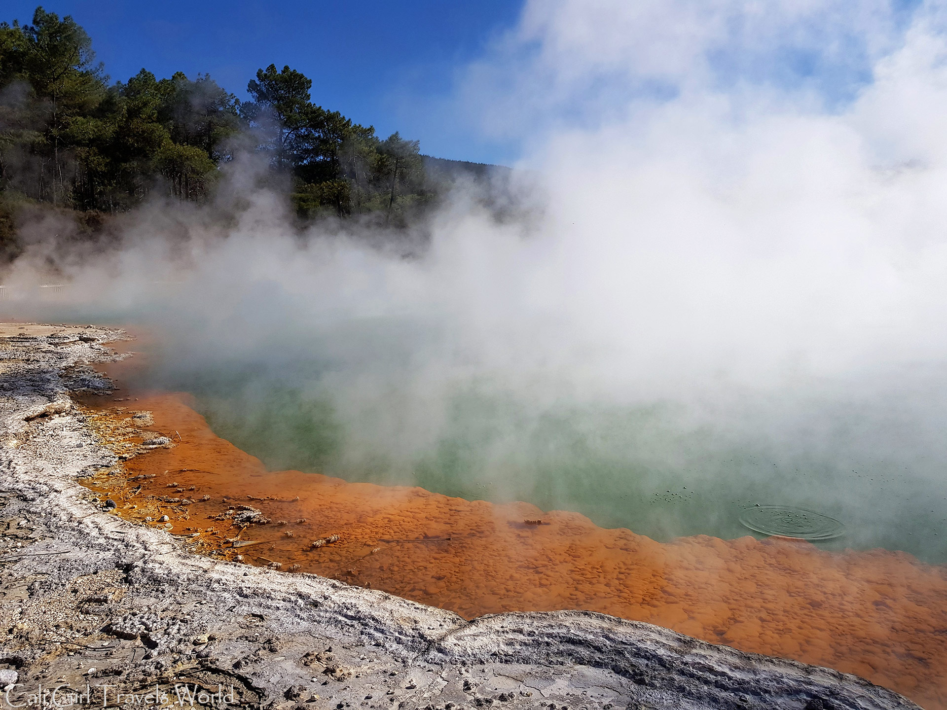 "At the geothermal ""Champagne Pool"" in the North Island of New Zealand."