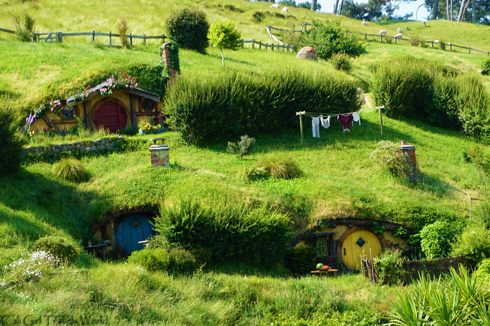 A photo of several hobbit homes in Hobbiton from the film location of Lord of the Rings, Matamata, New Zealand.