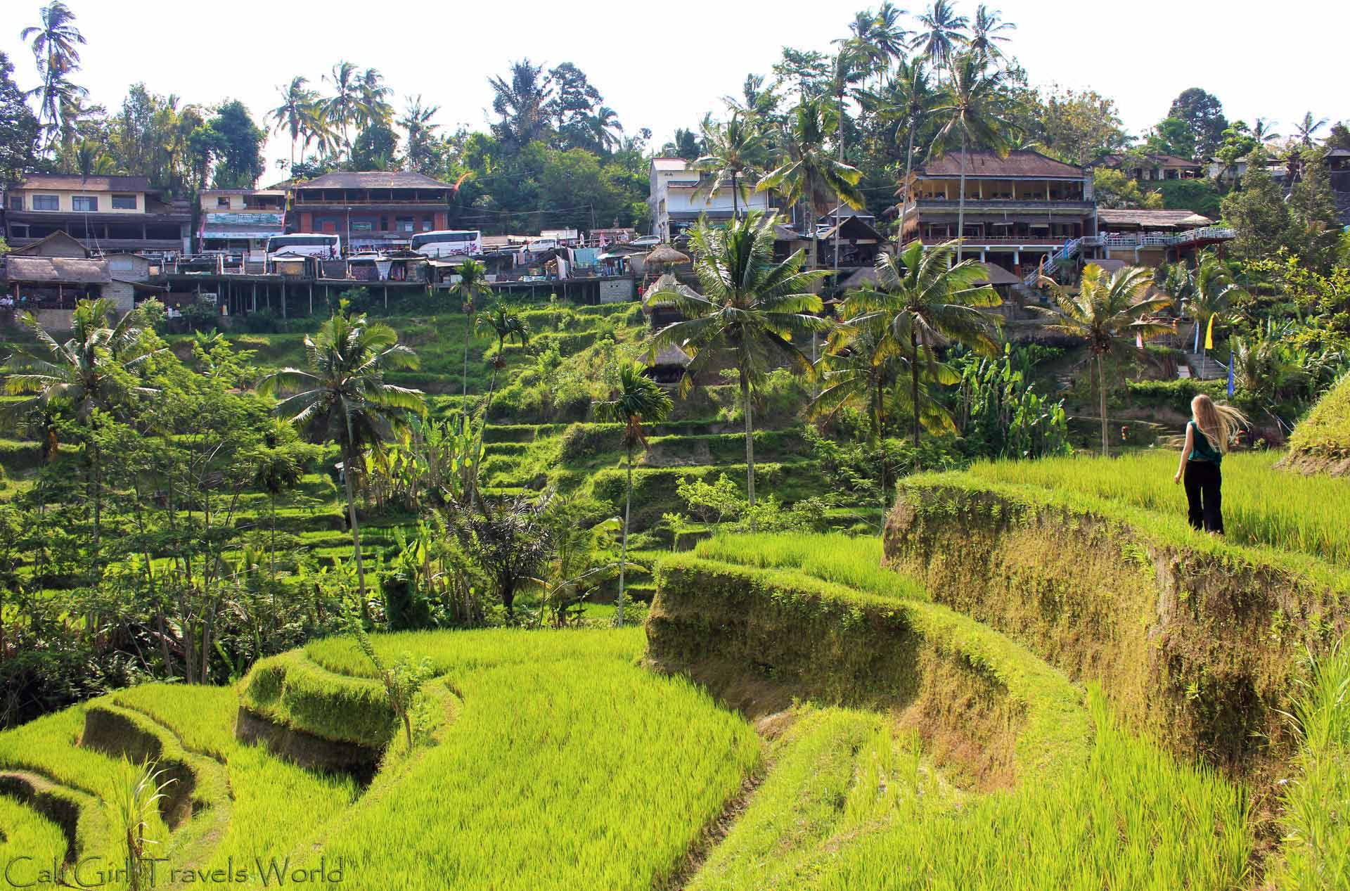 Travel photographer walking among the rice terraces in bali, indonesia with blonde hair blowing.